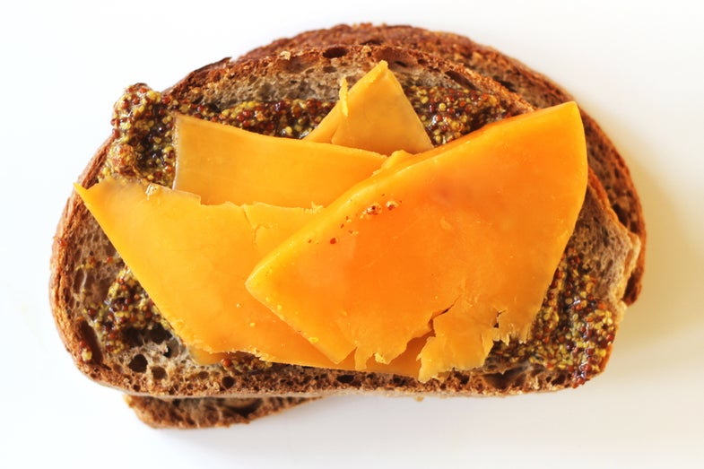 Sharp Cheddar Sandwich