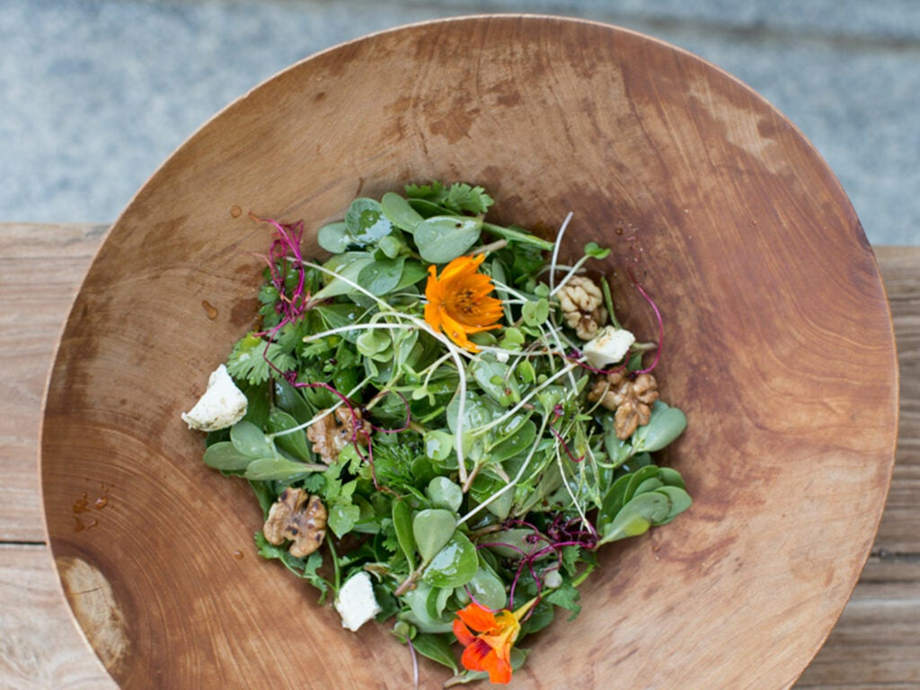 Purslane and Herb Salad