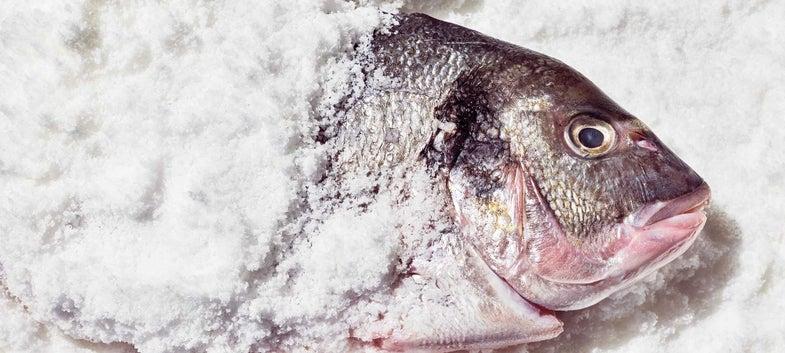 Salt-Baked Sea Bream with Allioli