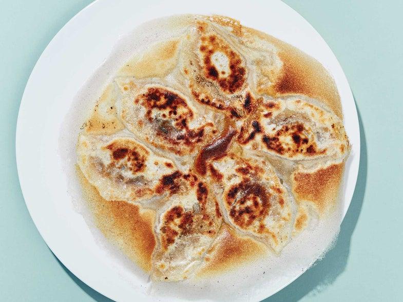 pan-fried spicy beef dumplings