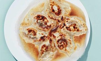 Spicy Beef Pan-Fried Dumplings