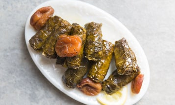 Beef Dolma with Apricots and Tamarind