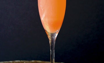 Friday Cocktails: The Rhubarb Fizz