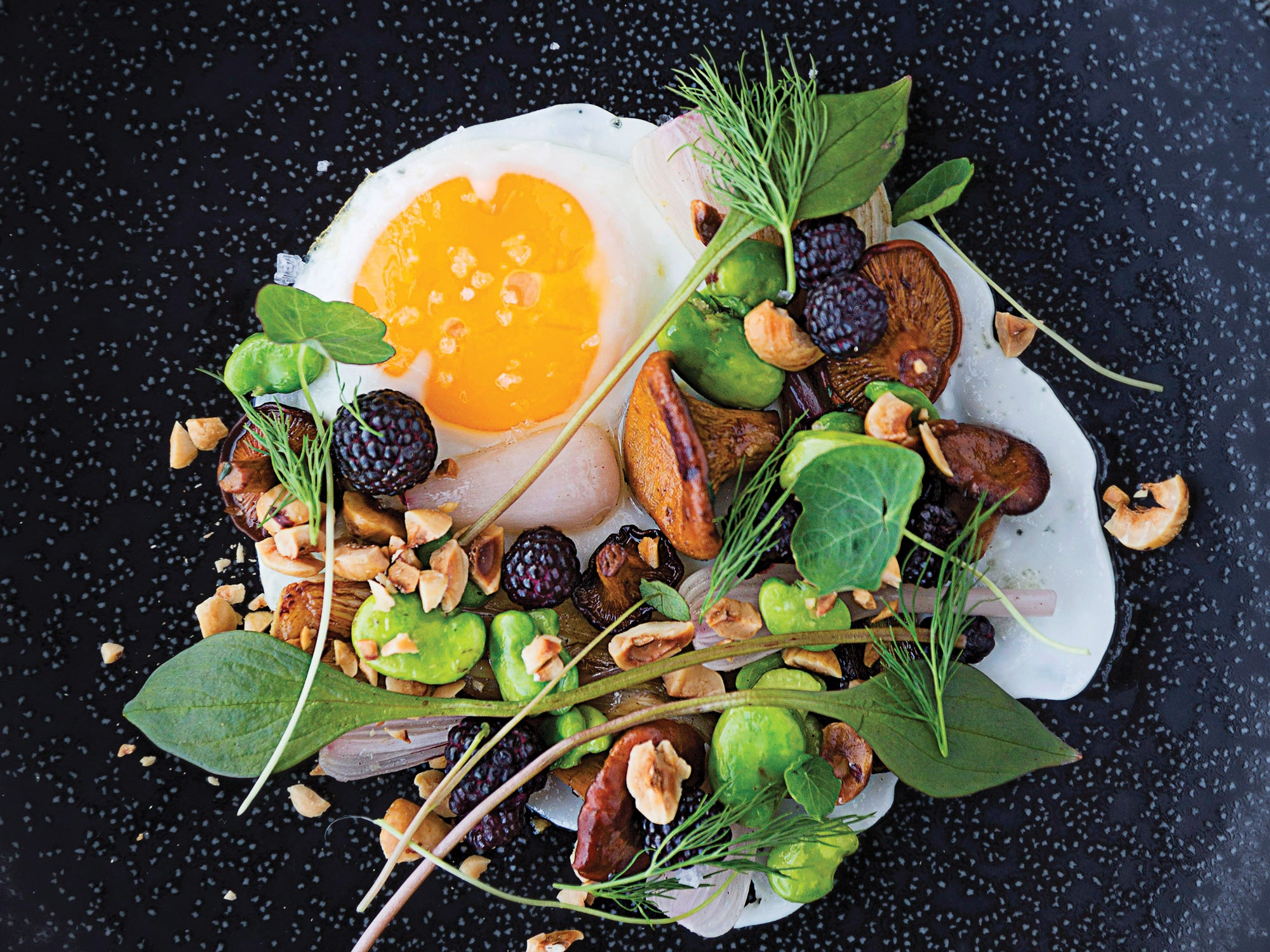 Minneapolis, Fried Egg with Hazelnuts, Chanterelles, Green Garlic and Blackberries