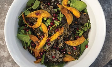 Fall Salad with Roasted Butternut Squash, Kale Chips, and Pomegranate Seeds