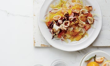 Fennel and Citrus Salad with Charred Squid