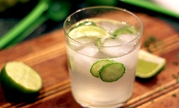 Friday Cocktails: The Cucumber Gin Cooler