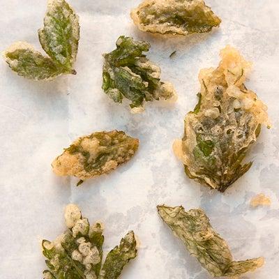 Herb Tempura