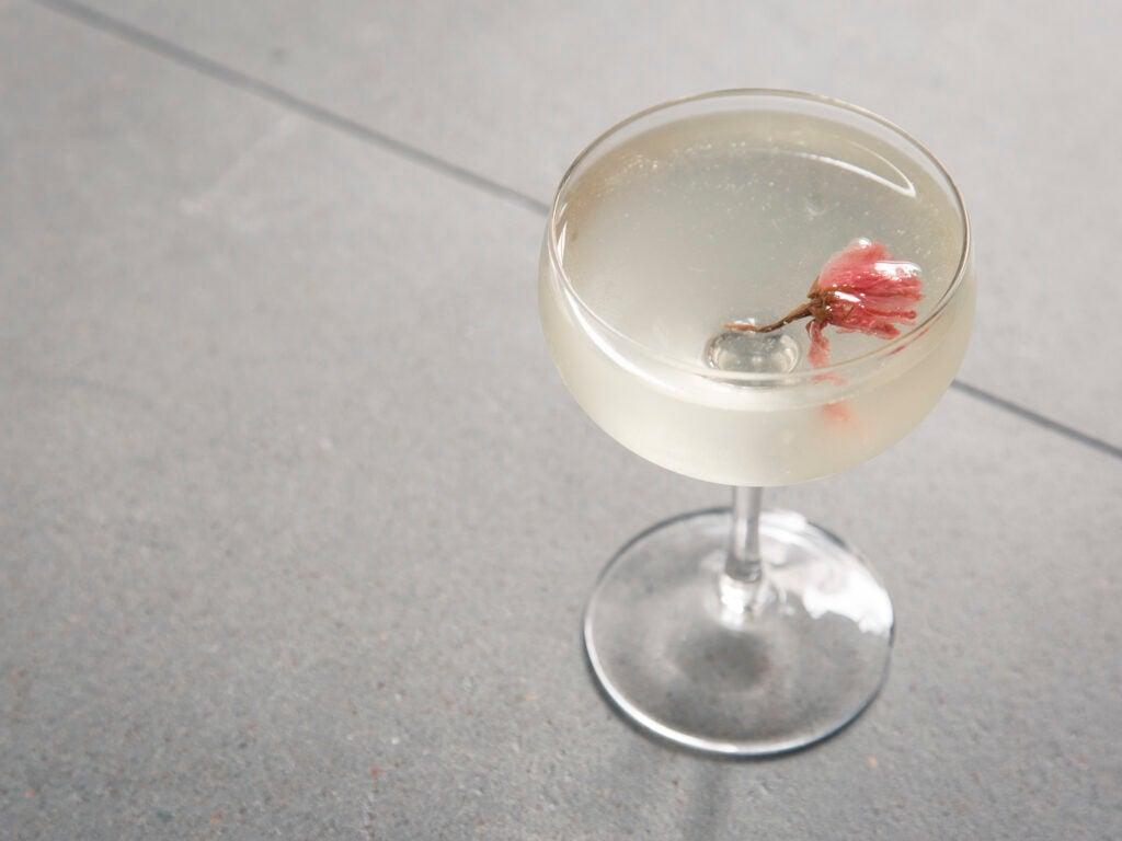 Sakura Martini