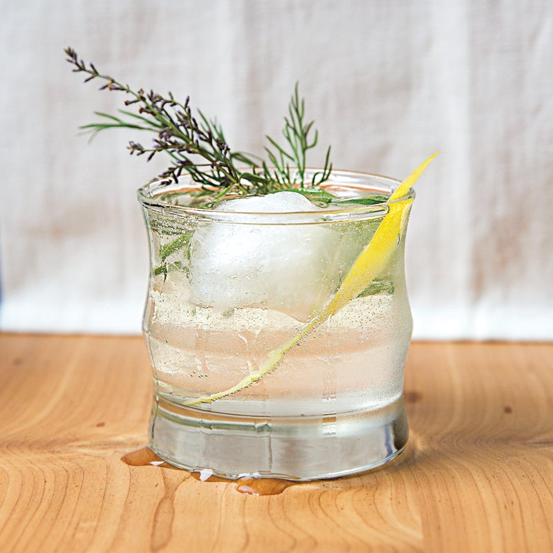 Dill Gin and Tonic