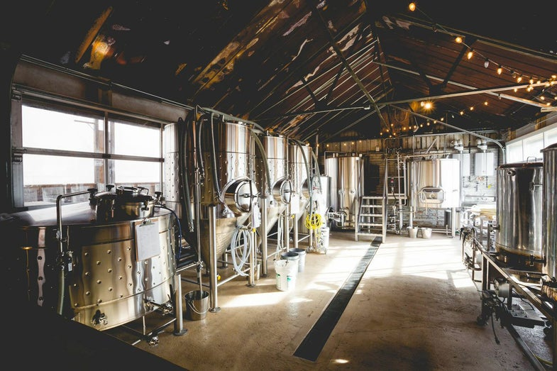 The 5 Breweries You Must Visit in Asheville, NC