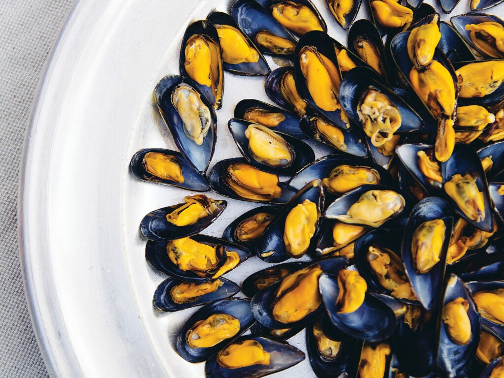 plate of French Mussels with Herbed Vinaigrette