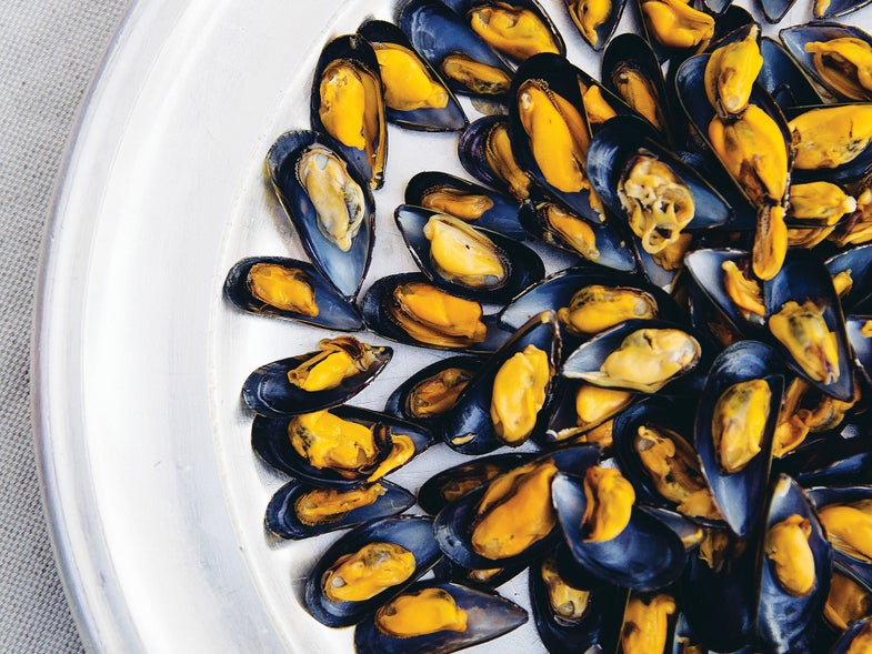 briarritz mussels herbed vinaigrette moules