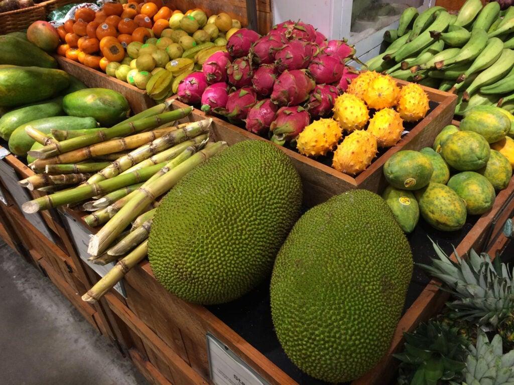 """Jackfruit"""
