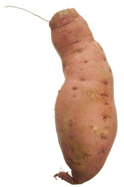 Nugget sweet potato
