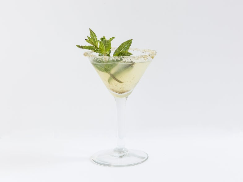 The Verbena and Mint Cocktail