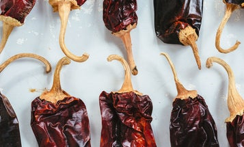 11 Dried Mexican Chiles to Know and Love, and How to Use Them