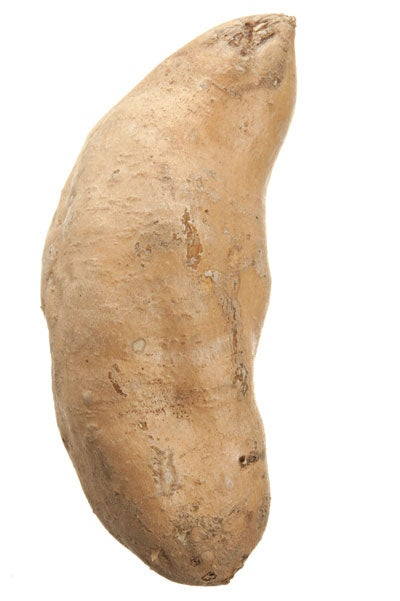 hannah sweet potato