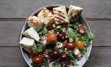 Grilled Halloumi and Cherry Salad