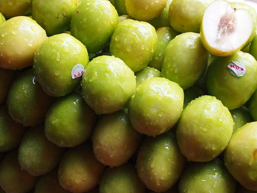 """""""Guava"""""""