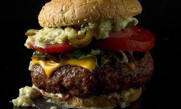Secrets of the Grill: Burgers