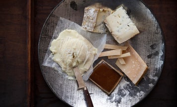 Four Decadent Cheese Plates
