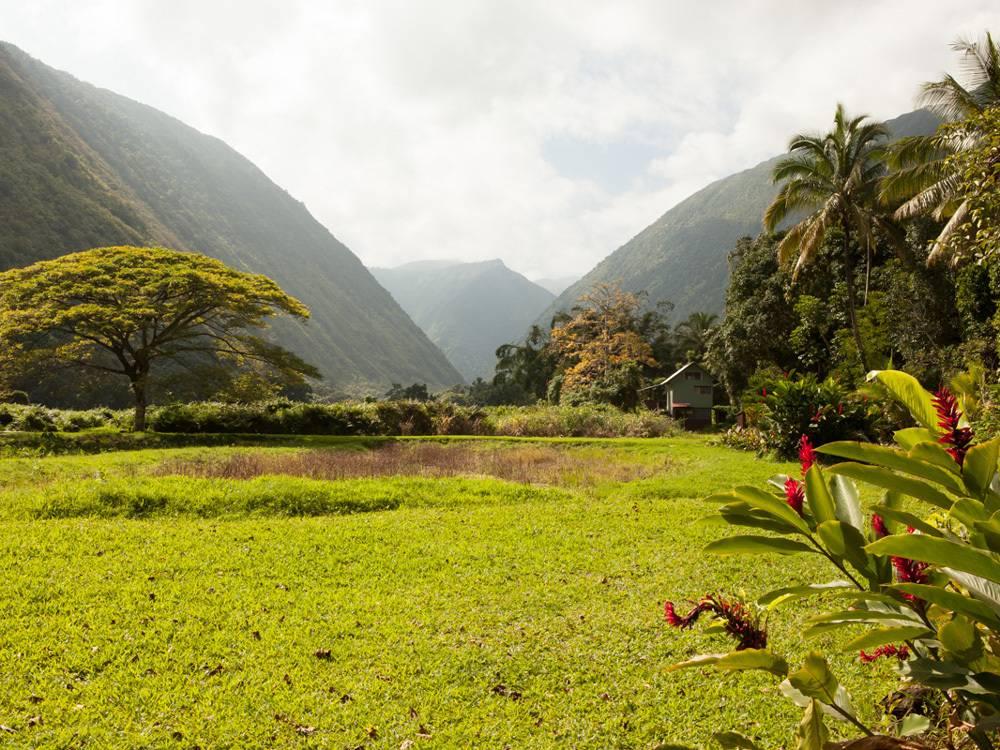 Hawaii, Waipi'o Valley, Potluck feast