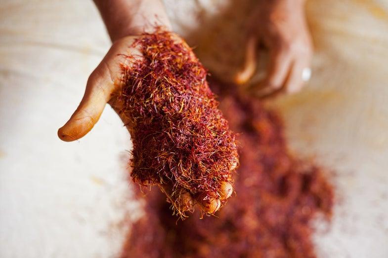 north-india-kashmir-saffron