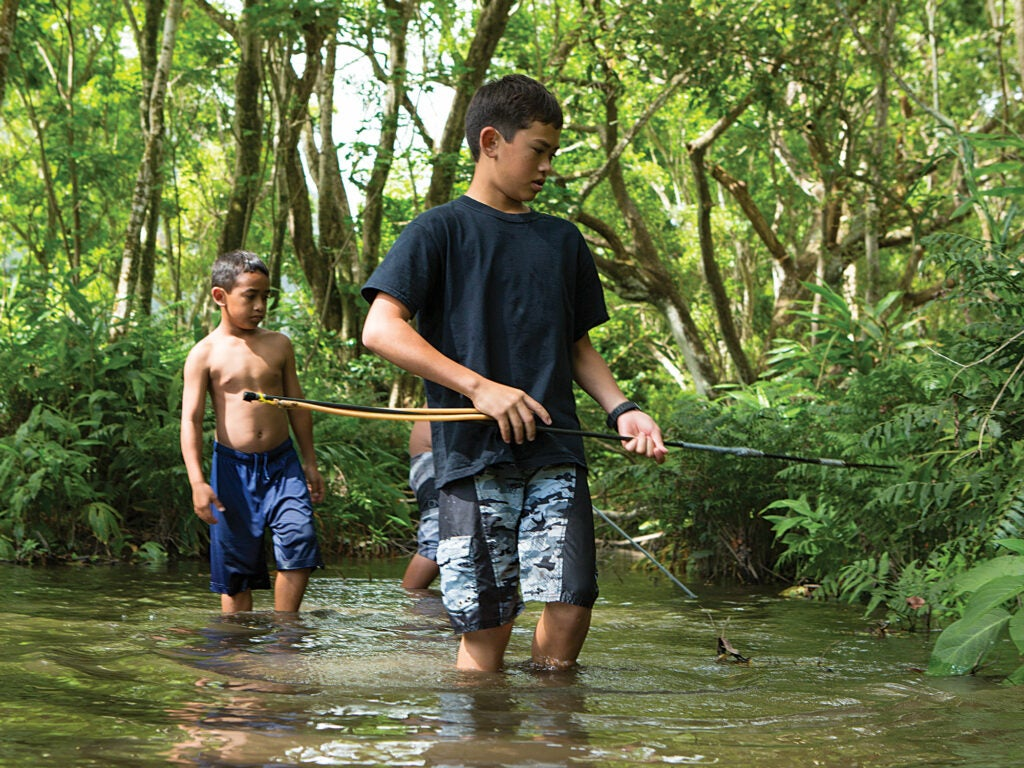 Two boys spear wild shrimp in a river in the Waipi'o Valley
