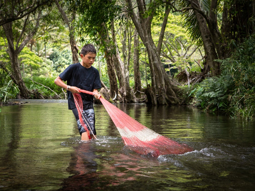 Hunting for freshwater shrimp with a cast net