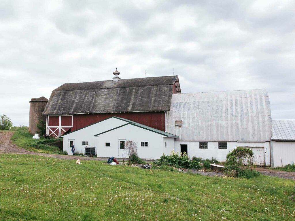 Dairy State's small farmstead