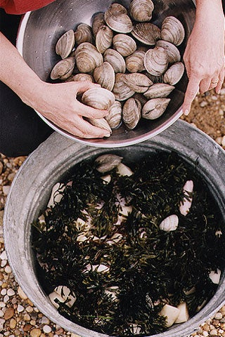 Add another layer of seaweed, then clams.