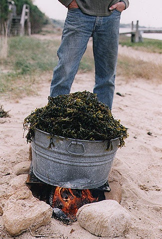 Put the washtub on a grate over a beach fire or on a hot barbecue grill. Cook for 45 minutes to 1 hour. When the potato on top is soft, the lobster bake is done.