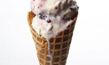 Sweet Corn and Black Raspberry Ice Cream