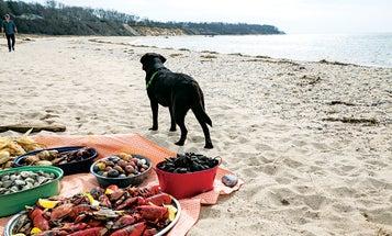 A Seaside Supper
