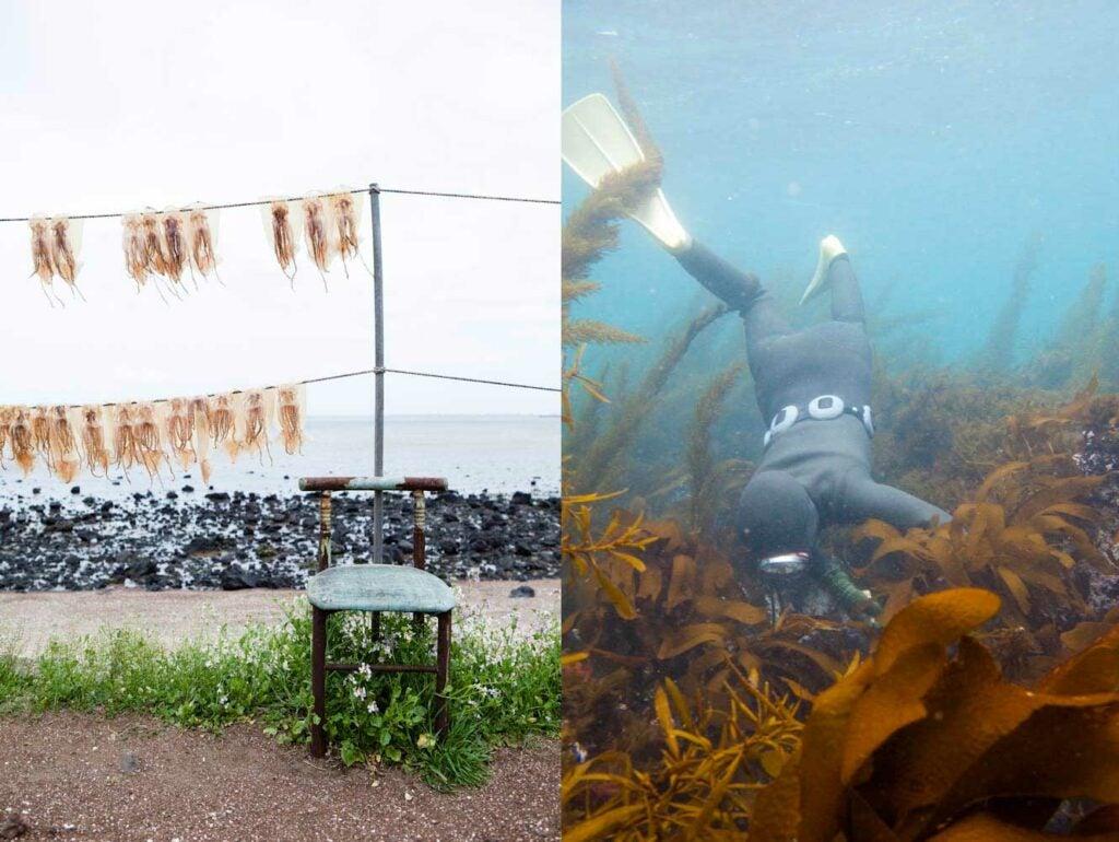 Urchin Divers