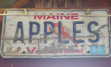 5 Places to Eat in Portland, Maine
