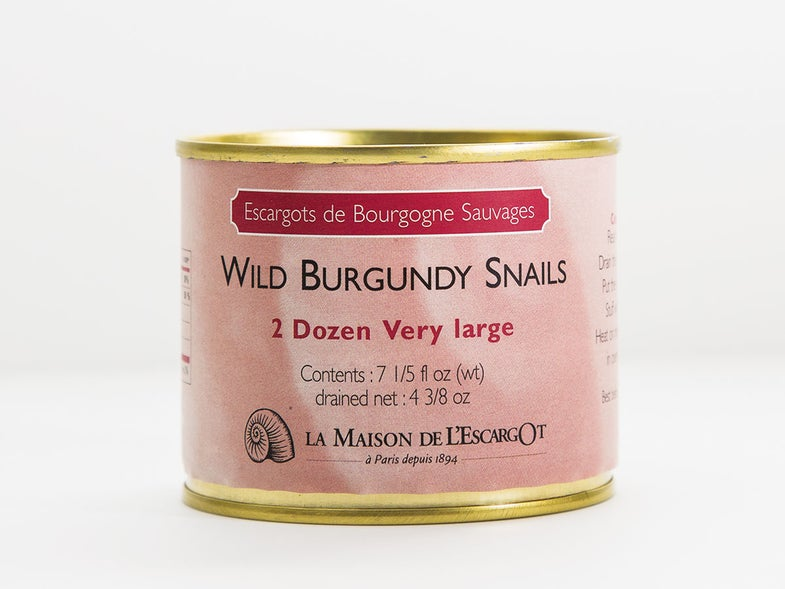 Where to Buy High-Quality Snails Online