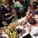Corsican Recipes