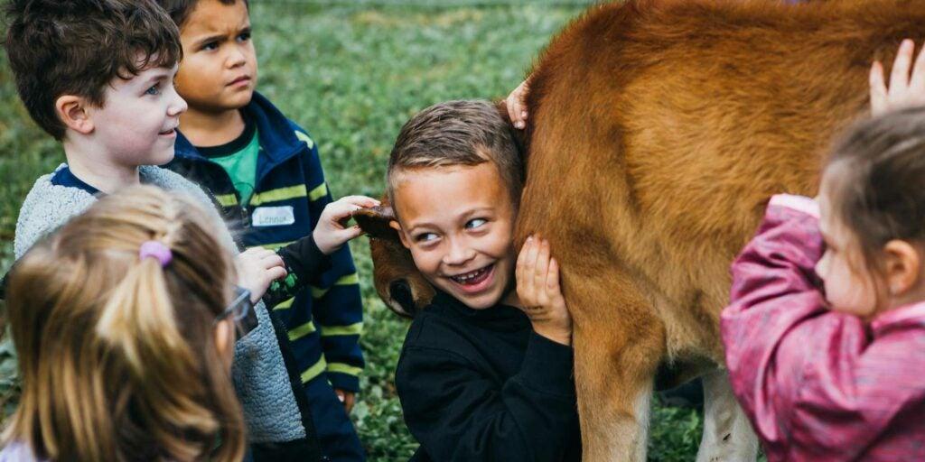 children hugging calf