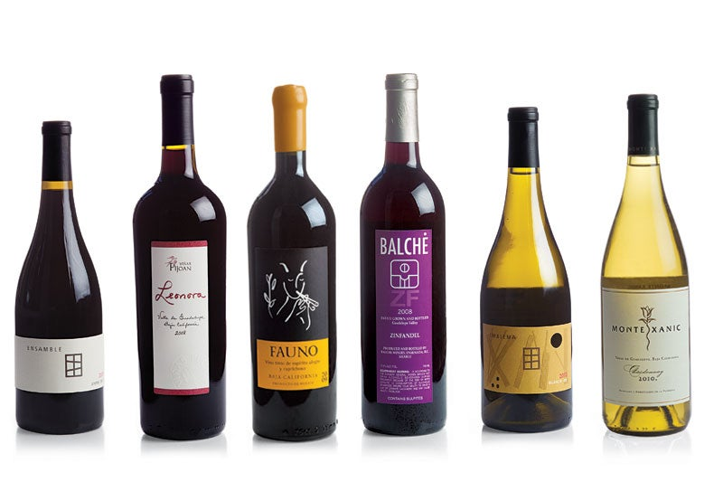 Baja's Best Bottles