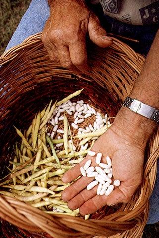 httpswww.saveur.comsitessaveur.comfilesimport2008images2008-03634-Italian_pantry-legumes_6_480.jpg