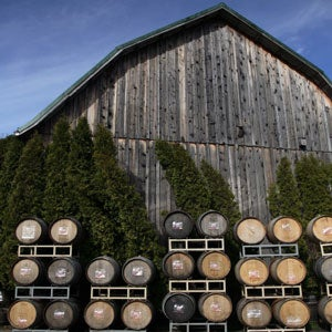 American Road Trips: Pinot Noir Pilgrimage