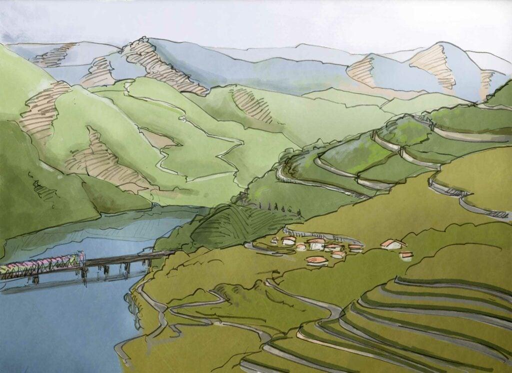 taylors landscape