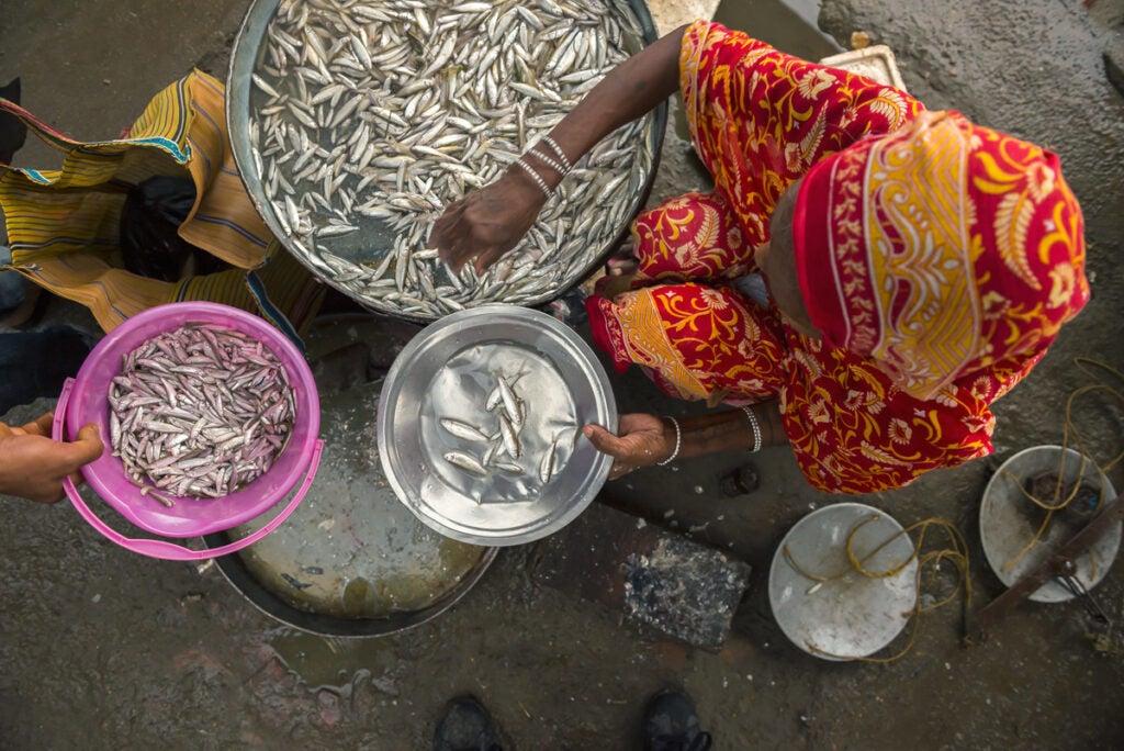 northeast-india-guwahati-fish-veg-market6