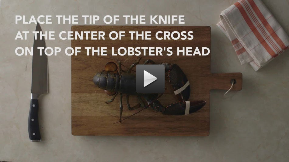 Video: How to Humanely Kill a Lobster