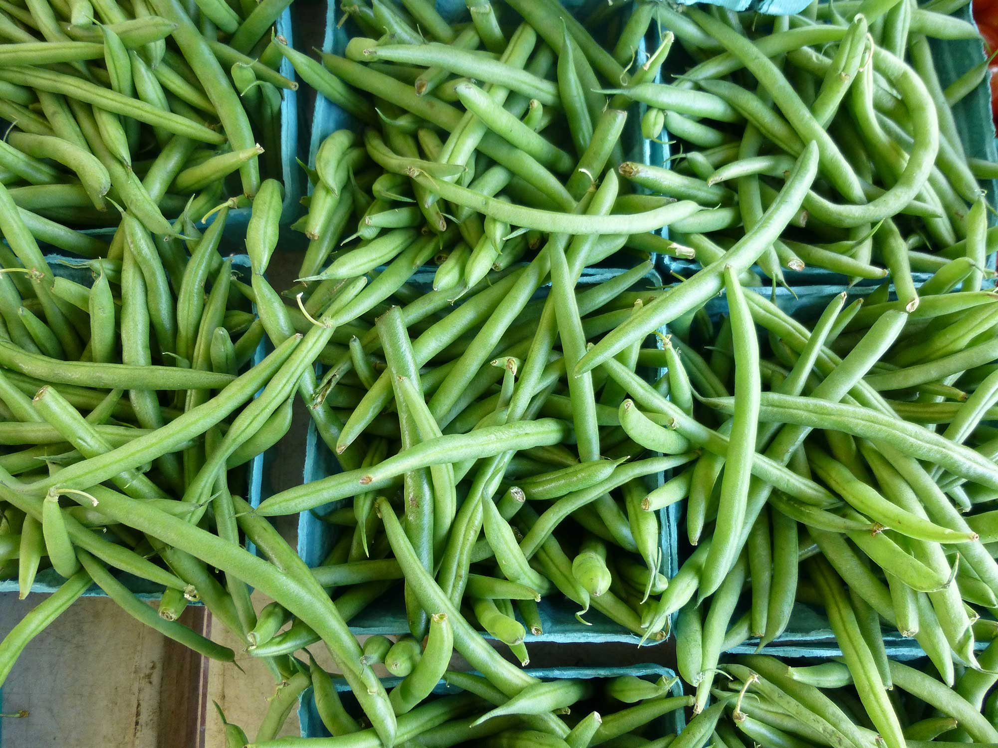 In Defense of the Olive-Drab, Slow-Cooked String Bean