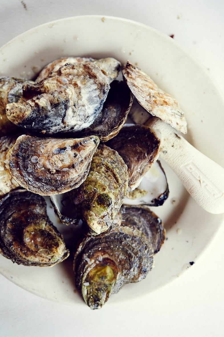VIDEO: Maine's Pemaquid Oyster Company