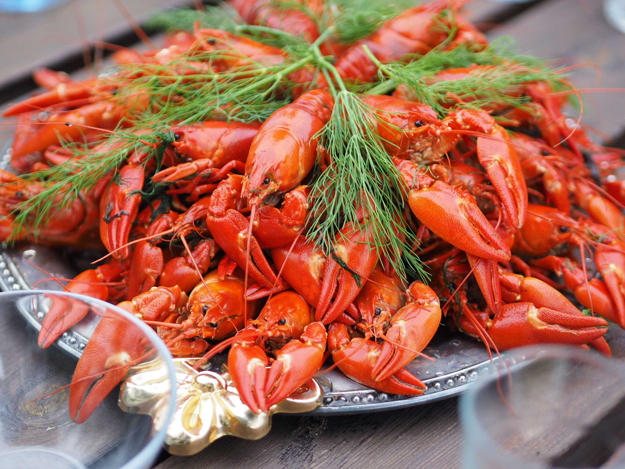 How to Survive a Finnish Crayfish Party