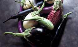 The Fine Madness of Eggplant